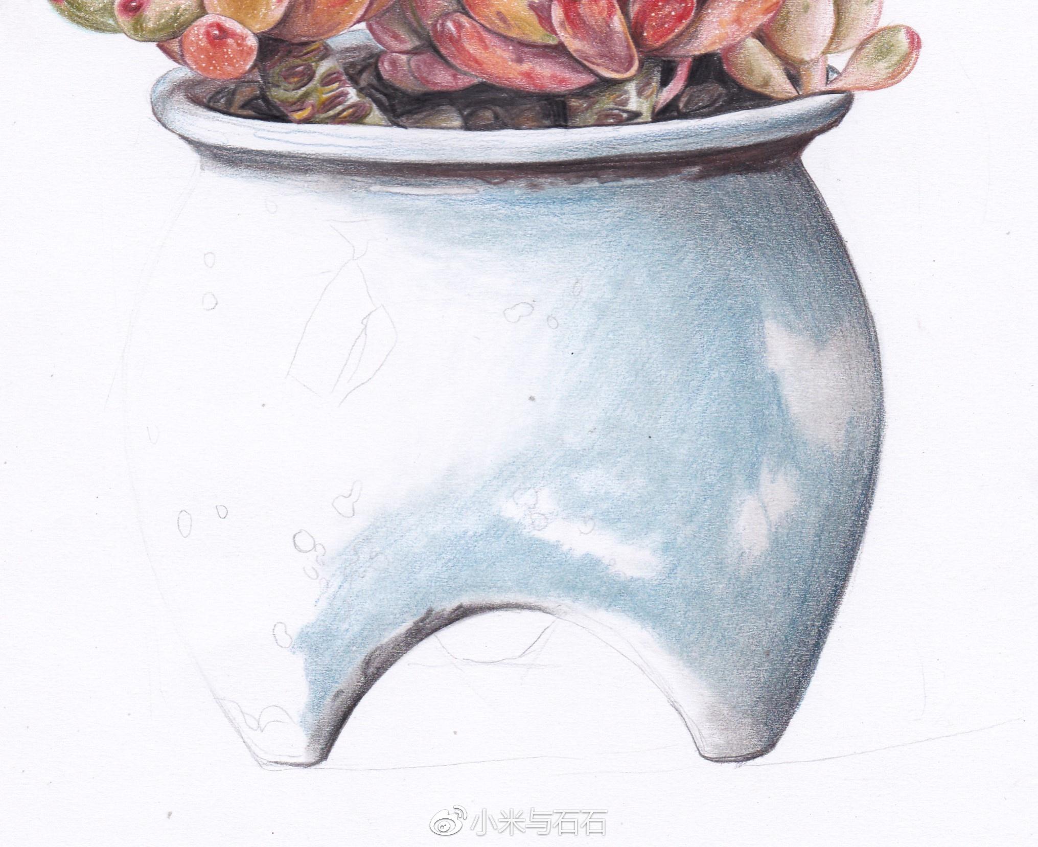 彩铅教程 | 小米与石石的彩铅手绘多肉-蓝豆(马可雷诺阿油性带色号)