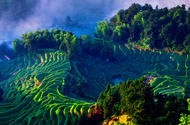 湖南不止张家界,还有个世界级的梯田,美了上下2000年