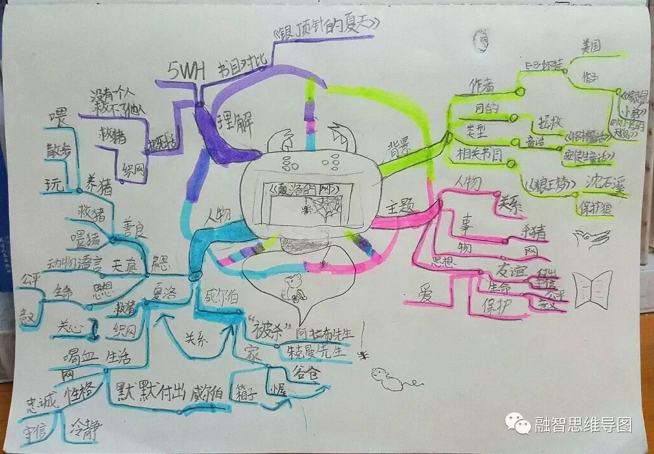 小学生手绘暑假表图片