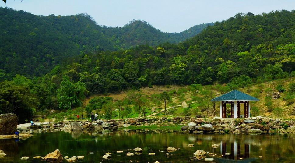 石门森林公园图片