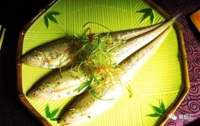 长江三鲜之一 刀鱼,肉质鲜嫩 营养丰富,怪不得食客们都爱它