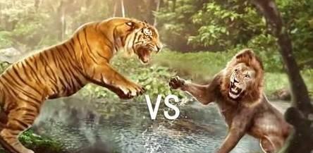 洞狮vs残暴狮-班 脑洞大开 狮子PK老虎,到底谁厉害