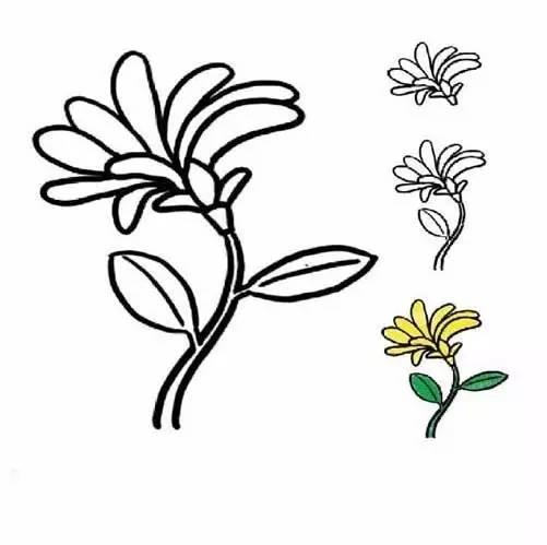 幼儿植物简笔画教程,还有对植物的解释哦,画画之余还能让孩子知识呢