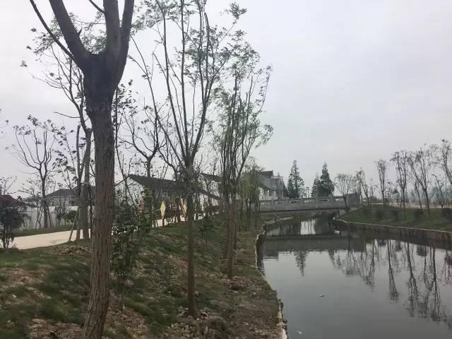 萨拉齐纳太村-创建,就是创新.小组长吴亦昌告诉记者,借着创建势头,村民还开始