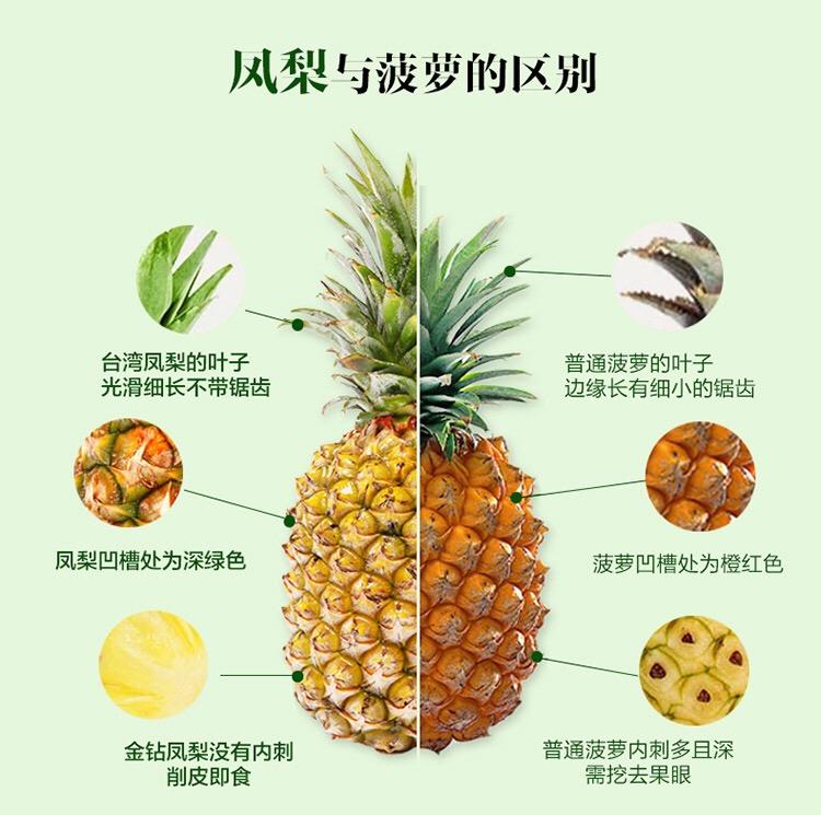 者中为什么选择凤梨而不是菠萝