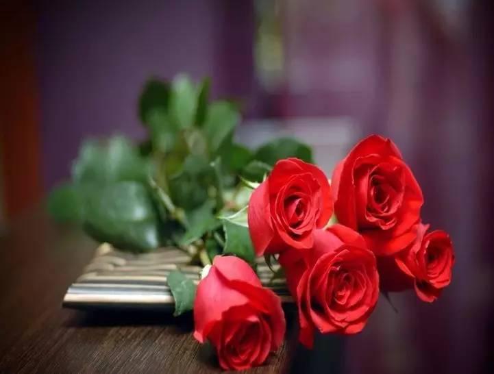 【图】玫瑰花如何保鲜 玫瑰花保鲜方法