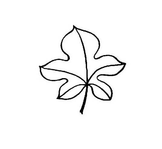 儿童简笔画:画树叶,和孩子来一场大自然的感悟吧
