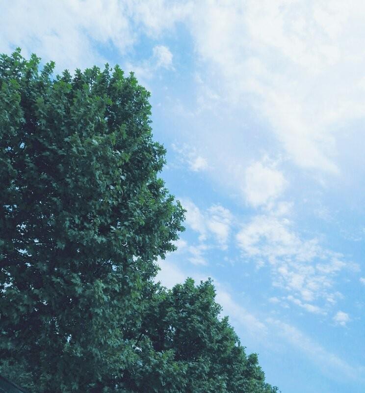 ,就是最纯净的天空 vsco调色