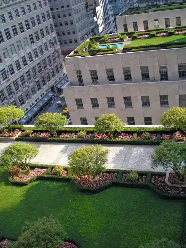 楼顶花园设计 ,看完好想拥有一个啊