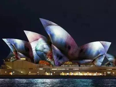 悉尼灯光音乐节璀璨回归!