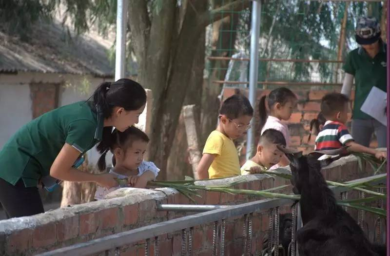 活动丨广西南宁自然教育幼儿园浸入式跟岗学习活动