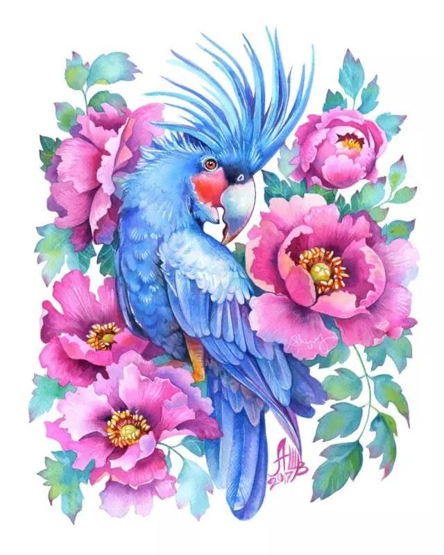 她画的水彩花卉和植物,这样的插画我想给100分!图片