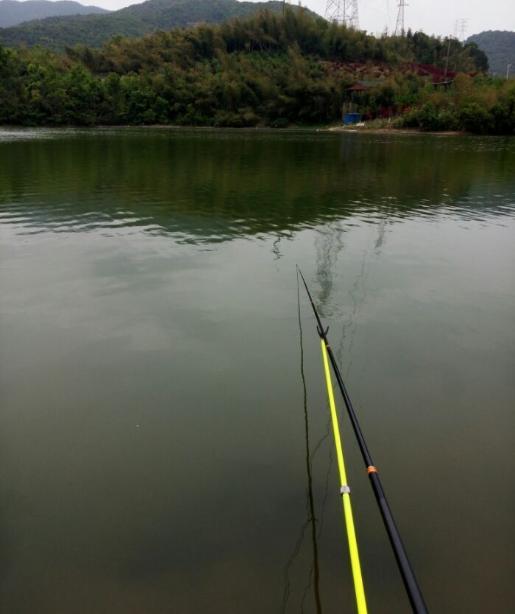 九龙湖钓鱼之狂拔大条子!