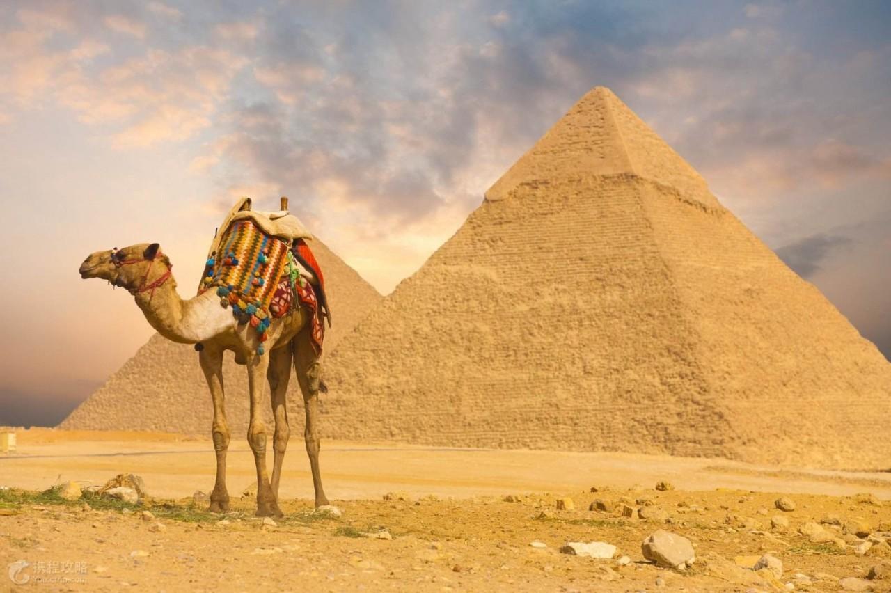 埃及旅游最佳季节图片