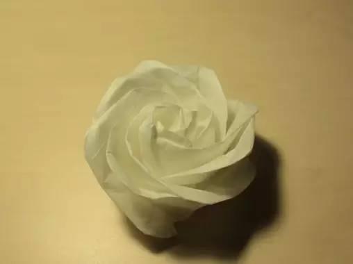 A亲手做的一板川崎玫瑰,爱就是需要表达070518图片