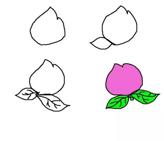 50种水果简笔画带颜色