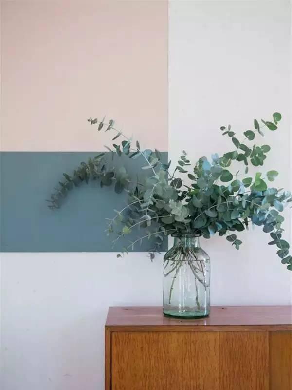 尤加利叶分很多种, 圆叶的,尖叶的,带果的,不带果的, 但每一种图片