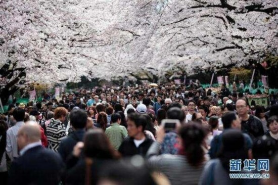 """日本去年向中国人发放签证数再创新高 增幅高达12"""""""
