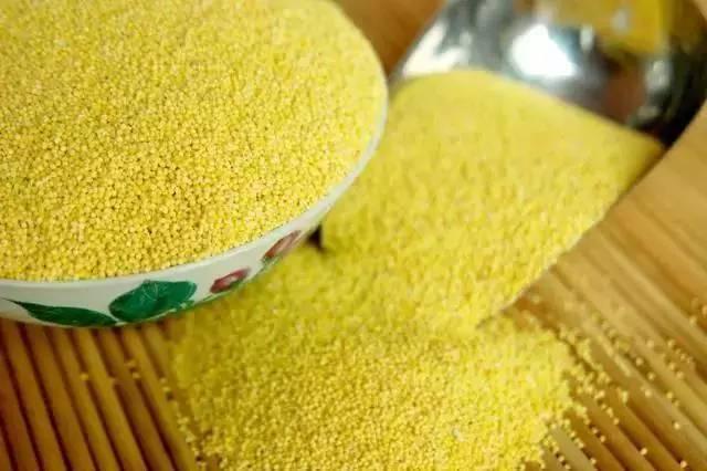 ●小米这样吃,比你吃燕窝鱼翅还养颜.