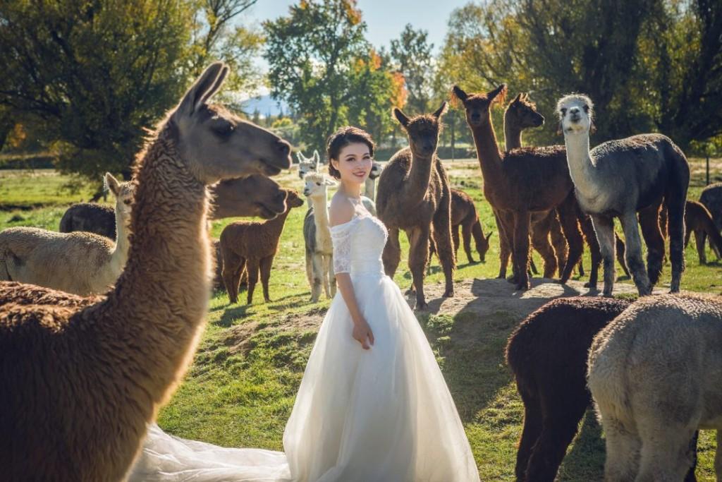 边走边拍,Phoment海外约拍让婚拍和旅游两不误