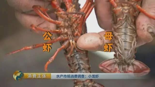 小龙虾 吃我还说我有病 横纹肌溶解症跟我没关系 爱吃小龙虾的南京