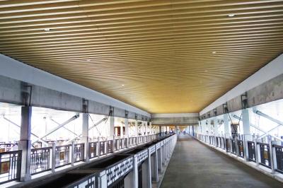 万福大桥桥下恢复通行(组图)