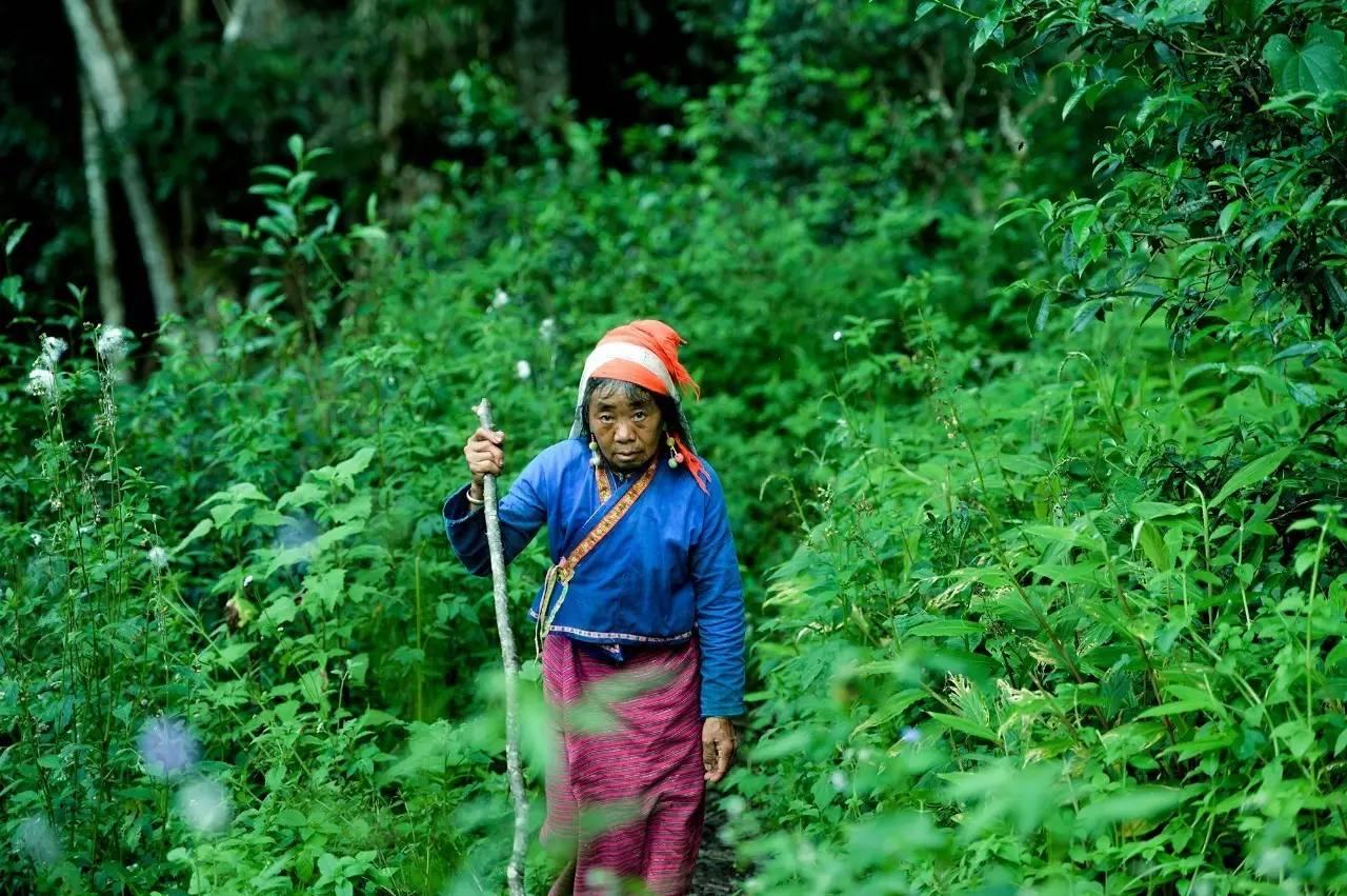 热带雨林的爆笑生活_生活在热带雨林的人