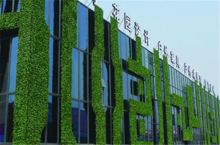 上海仿真植物墙公司_植物墙公司lihan1688_植物墙公司