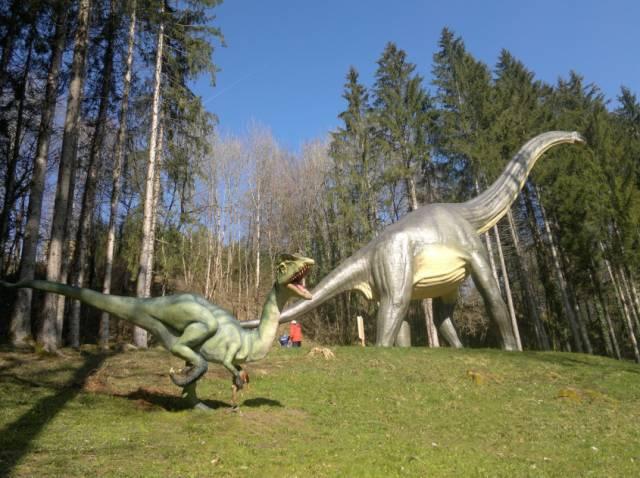 史前公园占地15万平方米,树木繁 在这样一个特殊的自然环境,恐龙