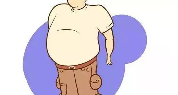 部脂肪_造成许多肠胃和心脏器官下垂病,使腹部和大腿部脂肪淤积,产生腰围线和