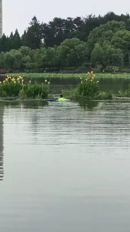 紧急!永康香樟公园一男子跳湖,结果...