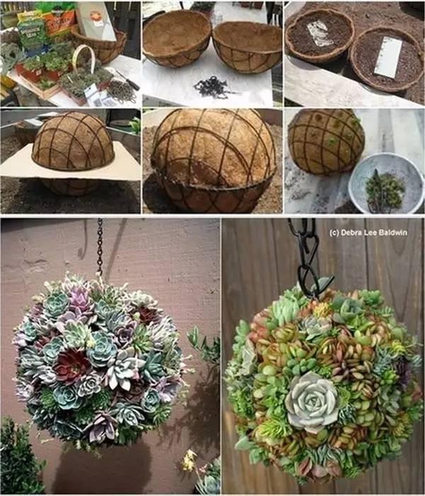 【生活常识】谁还买花盆呀,自己在家做,比买的更好看!