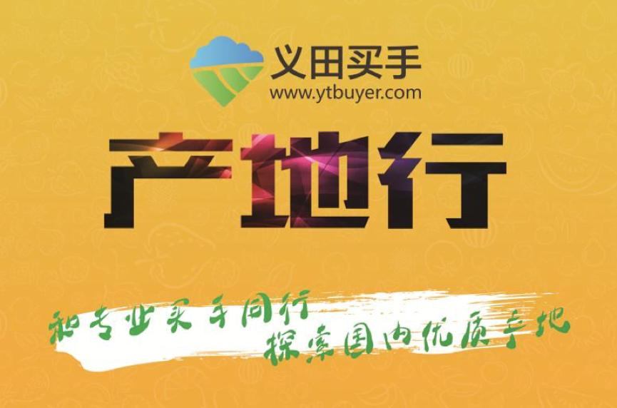 上海优质葡萄示范园区考察活动火热进行中