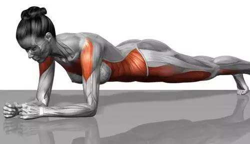早起运动能减肥吗图片