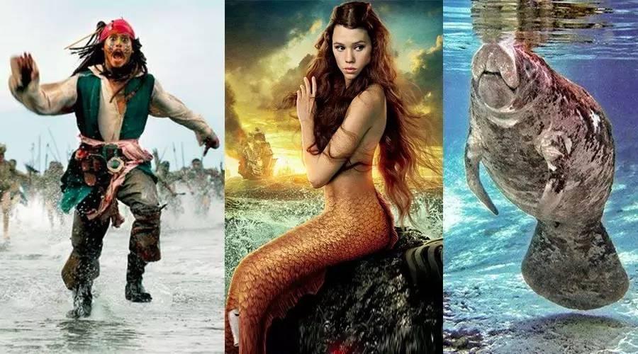 于公众号:蝌蚪五线谱-让海盗们闻之色变的深海巨怪,居然有点萌