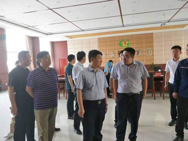 武安市委书记魏雪生督导裕华钢铁环保提升整治工作图片