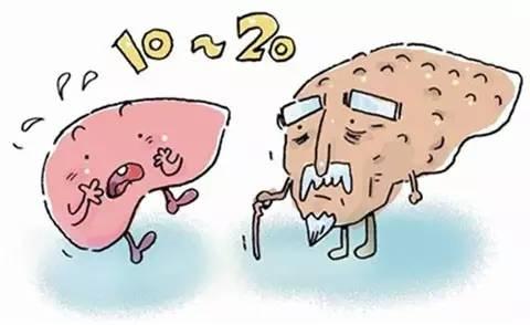 石斛能搞定的6大肝胆疾病排行榜