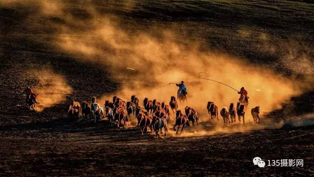 全景坝上 万马奔腾,马踏水花 摄影采风团报名从速图片