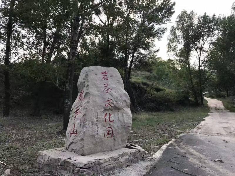 狐爷山图片