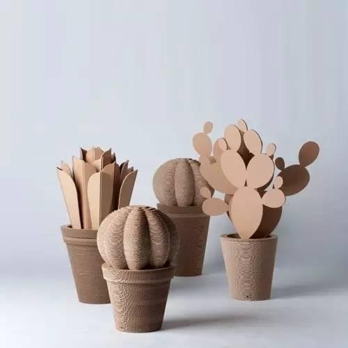手工制作 | 幼儿园各种仙人掌diy手工制作图片