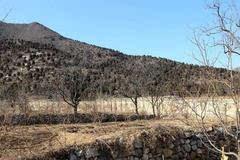 一村人守一女子墓五百年,乾隆曾想挖,见到石碑上八个字立即放弃