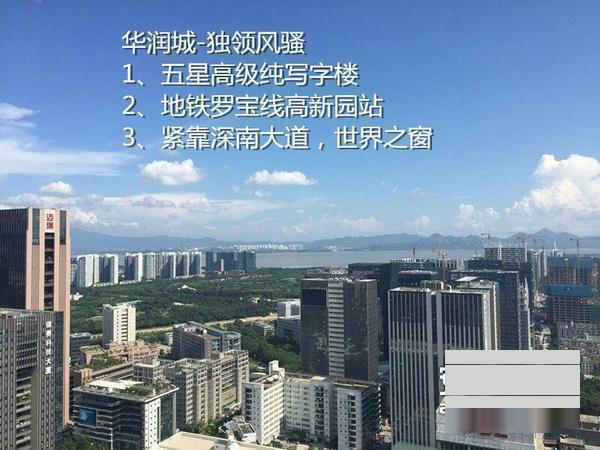 科技园 华润大冲商务中心 超甲级写字楼图片