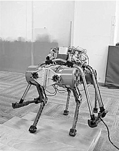 """新""""赤兔""""机器人轻松爬楼梯 可在复杂地形探险(图)"""