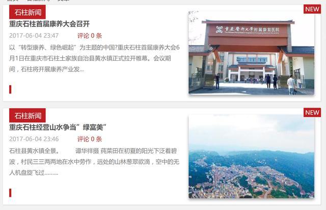 重庆石柱传媒网 重庆石柱互联网络新媒体 3