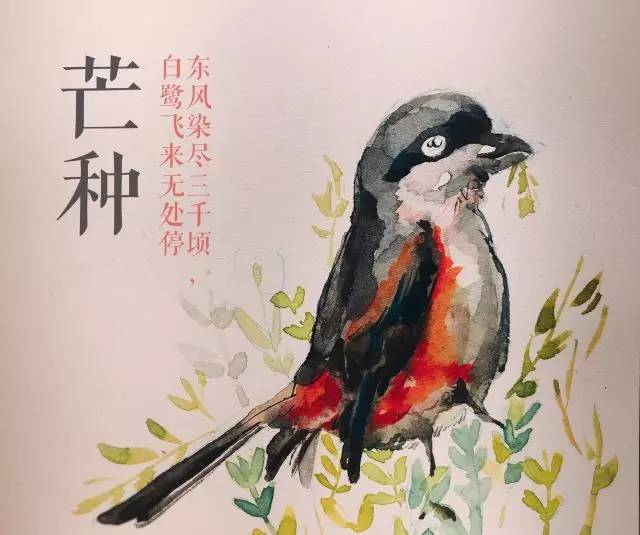 二十四节气 芒种临仲夏
