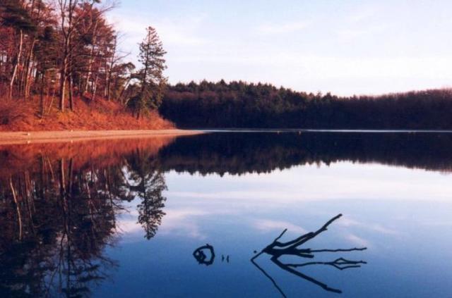 书 梭罗,在 瓦尔登湖 边用两年时光,感受自然生活
