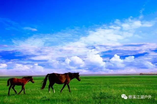 无际之美,驰骋草原骑马穿越6日游 6月22日以后每日发团