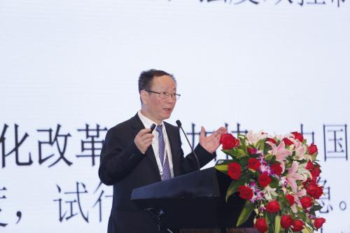 中国能源如何转型?王一鸣这样说……