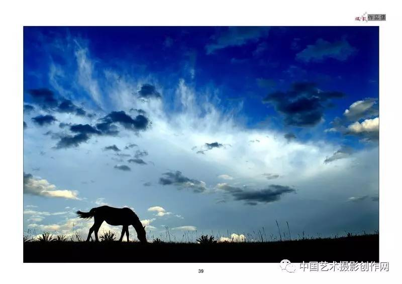 坝上花海 万马奔腾 牛羊群牧归 长城 摄影创作及ps培训团图片