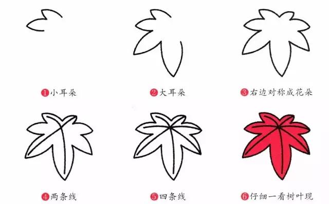树叶简笔画步骤图
